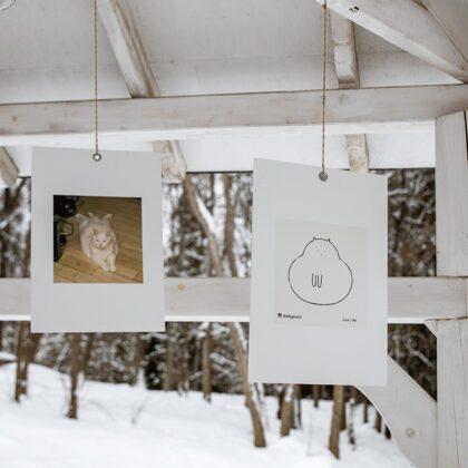 @dailypurrr kaķu zīmējumu izstāde lapenē