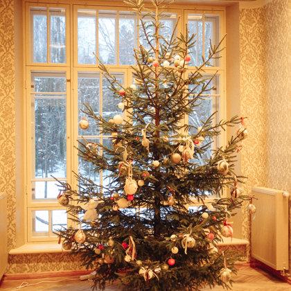 Ziema 2018 un Ziemassvētku atklātnes