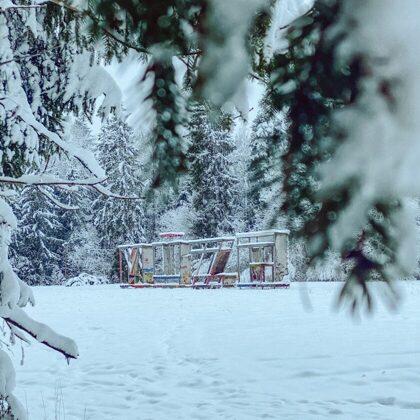 White winter in Luznava Manor Park